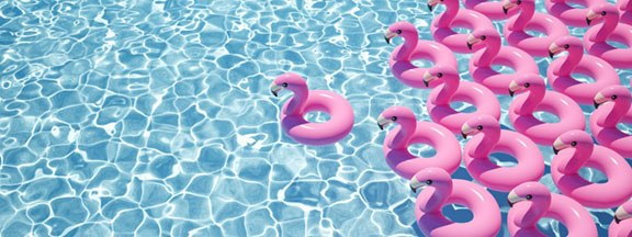 Blow up flamingos in pool